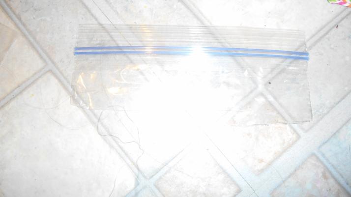 DSCN5620[1]