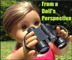 From a Doll's perspective